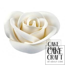 Τριαντάφυλλα Super 7,5cm Λευκό
